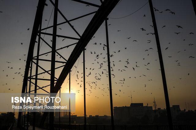 پیش بینی کاهش دو روزه دما در خوزستان