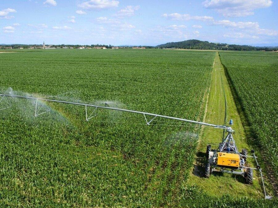 افزایش 10 برابری محصول با استفاده از بذرهای اصلاح شده