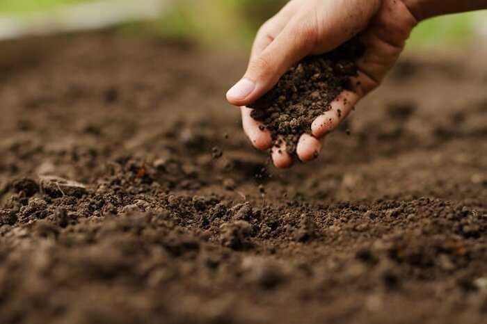 ضرورت تدوین اطلس آلودگی خاک استان قزوین