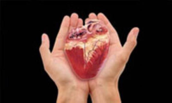 عاداتی که به قلبتان بدون این که شما بدانید صدمه می زنند